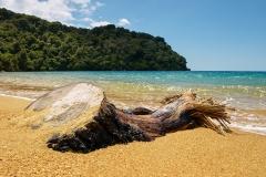 Abel Tasman Bay 1