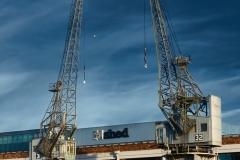 Cranes, M Shed